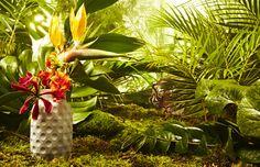 concrete jungle / Wildnis-Vase aus CUT Magazin 9