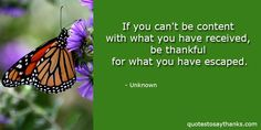 Funny Thank You Quote - Escape  #bethankful #quotes