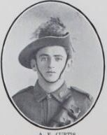 CURTIS,   Arthur   Edward.   Private,   No.   5804,  6th   Rein.  Private   Curtis   was   born   and   educated   at   Nikenbah.   He   is   the   son   of   James  Curtis   and   Anna   Mary   Curtis,   of   Pialba.