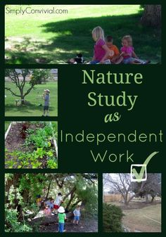CM Nature Study - a simple, easy way to make it happen in your own backyard! Let your children observe the seasons and take ownership of their work with this assignment method.