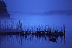 Fishing Weir at Twilight