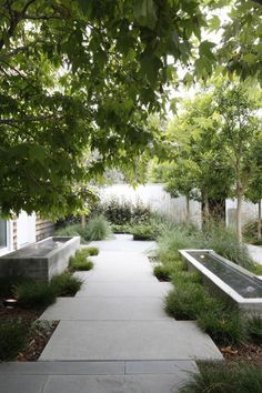 A pair of poured-concrete fountains flanks a walkway in an LA garden designed by landscape architect Mark Tessier. Photograph by Art Gray. For more of this project, see Landscape Architect Visit: A Refined Family Garden in LA's Pacific Palisades.