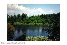 Property in Lake Anna, Lake Louisa, Virginia: BUMPASS, VA Water Front Real Estate