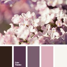 Color Palette #3428