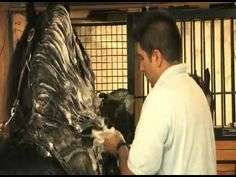 How would you groom a friesian horse?