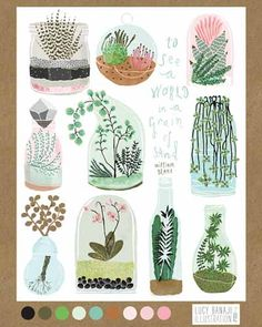 Lilla Rogers » she has used a colour palette which restricted her colour decisions shower, it allows her to follow a specific colour way. These are more detailed than other researched designs and have challenged the proportions of the plants.