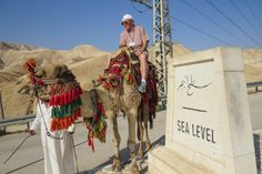 Camel picture stop, sea level, Negev Desert, Israel, photo by Mike Keenan, Read articles at: http://www.whattravelwriterssay.com