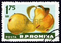 ROMANIA - CIRCA 1963: a stamp printed in the Romania shows Pears, Pyrus, Fruit, circa 1963