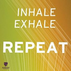 tip from Ashford University: When you feel stressed, take a moment and breathe. Personal Wellness, Wellness Fitness, Wellness Tips, Chiropractic Wellness Center, Family Chiropractic, Feeling Stressed, How Are You Feeling, Ashford University, Master Degree Programs