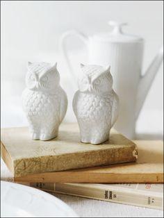 Alexandra Grablewski Photography #owls #bird van: http://www.agrablewski.com/stills/15.html