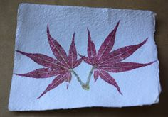 Build/Make/Craft/Bake: How-to: Hammered flower and leaf prints