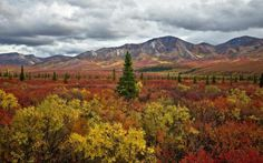the-stunning-beauty-of-autumn-in-different-parts-of-the-world-19