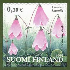 Linnaea borealis stamp from Suomi/Finland. This dainty wildflower is also native to North America where it is known as twinflower. It was named after Swedish botanist Carl Linnaeus, and it was his favorite flower. Postage Stamp Art, Love Stamps, Small Words, Flower Stamp, Vintage Stamps, Stamp Collecting, Mail Art, Flora, Carl Linnaeus