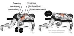 Lying dumbbell one arm rear lateral raise. An isolation exercise. Target muscle: Posterior Deltoid. Synergistic muscles: Lateral Deltoid, Middle and Lower Trapezii, Rhomboids, Teres Minor, Infraspinatus, and Supraspinatus.