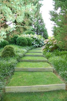 Backyard Garden Layout Consider this necessary graphics and browse through the shown important info on Ditch Landscaping.Backyard Garden Layout Consider this necessary graphics and browse through the shown important info on Ditch Landscaping Landscape Stairs, Landscape Design, Garden Design, Landscape Plans, Steep Gardens, Hillside Landscaping, Landscaping Ideas, Terraced Backyard, Outdoor Landscaping