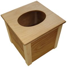 Franklin Phonetic School - Wood tissue box.  http://woodworkingteachers.com/default.aspx?g=postst=1942p=2 Look through all 3 pages of projects.