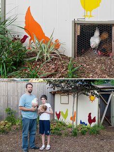 magazine backyard chickens more backyard chickens chicken