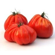 This pear-shaped beefsteak is one the most well-known specialty tomatoes in Italy. Plants produce bountiful g oz) delicious, meaty tomatoes with few seeds. Red Pear, Seed Germination, Container Size, Beef Steak, Tomato Sauce, Pear Shaped, Beets, Harvest, Cabbage