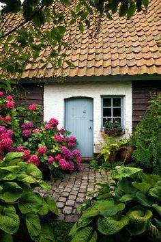 Cottage entrance with fabulous hydrangea.