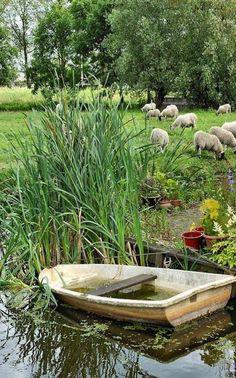 farm pond or, in Australia, dam Country Farm, Country Life, Country Girls, Country Living, Country Style, Country Roads, Cenas Do Interior, Esprit Country, Pond Life