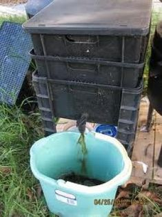 Spouts on worm bins make collecting worm tea an easy chore.