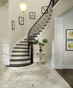 Cool Wrought Iron Balusters vogue Tampa Traditional Staircase Remodeling ideas with bullnose capped baseboard closed staircase curved staircase dark wood balusters dark wood tread elephant Staircase Remodel, Staircase Railings, Curved Staircase, Staircase Design, Stairways, Staircase Ideas, Banisters, Black Staircase, Staircase Decoration