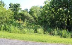 BANK FORECLOSURE LOCATED IN THE YELLOW CREEK AREA OF PICKENS COUNTY CLOSE TO GIBBS GARDEN 39,9 ACRES. BACK OF PROPERTY BOARDERS CHEROKEE COUNTY. ALL WOODED IN AREA OF HORSE FARMS. ONLY $6818.00/PER ACRE