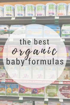 46 Best Organization For Busy Moms Images In 2019 Single