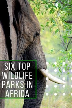 6 African National Parks to Visit Before You Die