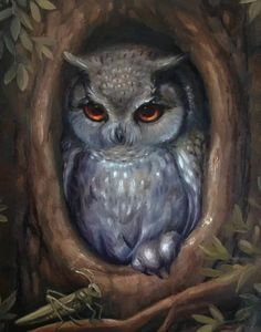 Adorable owl looks on at a little Grasshopper from the hollow of a tree. By Art.ificial.Light