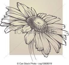 fiori disegni a matita - Buscar con Google