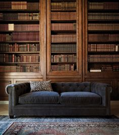 The books are made even more beautiful by their near obsolescence.  And that blue/gray velvet sofa - get out. Classic Library, Living Room Inspiration, Travel Inspiration, At Home Gym, Leather Sofa, Fitness Shoes, Bookshelves, Bookcase, Living Room Decor