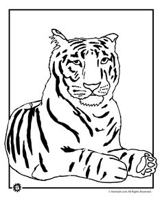 tiger Color by Number bengal tiger white clip art mosaic