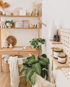 Best Plants For Bedroom, Bedroom Plants, Bedroom Decor, Bedroom Inspo, Bedroom Ideas, Wall Shelving Units, Shelves, Small Space Office, Oak Desk