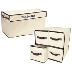 Large Toy Box and 4-Cubby Organizer Set