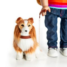 The Queen's Treasures Doll Pet Accessory - Collie Dog with Collar & Leash Collie Puppies, Collie Dog, 18 Inch Doll, Doll Accessories, Lps Pets, Collar And Leash, 6 Years, Girl Dolls, American Girl