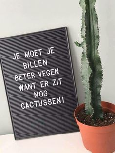 Dat is grappig! Dat is grappig! Cactus Quotes, Toilet Quotes, Best Quotes, Funny Quotes, Licht Box, Toilet Room, Boxing Quotes, Dutch Quotes, Where The Heart Is