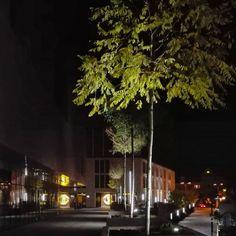 Friday evening in Sopot. Today is full moon.  #Sopot #travel #Poland