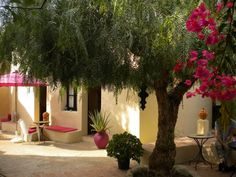Welcome to O Tartufo, Bed and Breakfast near Moncarapacho in the east Algarve, Portugal Best Honeymoon, Honeymoon Places, Portugal, Algarve, House Swap, Home Exchange, Couples Vacation, Double Room, Romantic Places