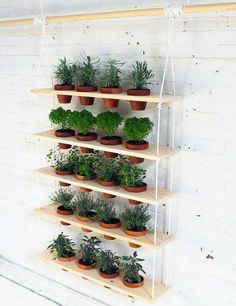 Hanging planter shelves