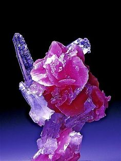 Rhodochrosite and Quartz  TRY   - combining with flowers   - make rock into flowers (like rose     formation at top)