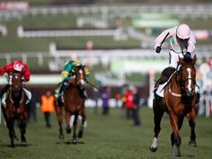 Cheltenham Champion Hurdle 2015: Faugheen powers to victory as Ruby Walsh and Willie Mullins celebrate triumphant opening day (photo via Independant)