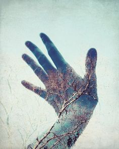 "Hand photograph - whimsical photography  - double exposure photography tree sky surreal wall art - blue and gold  ""Touch the Sky"""