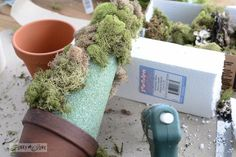 How to make a cone shaped topiary with moss / How to make inspiring moss topiaries in a crate via FunkyJunkInteirors.net