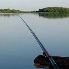 Where You Can Get Your Local Fishing Licencse - http://www.facebook.com/1250103581683499/posts/1254685767891947