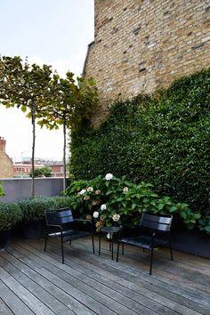 Small Space Gardening, Small Garden Design, Small Gardens, Outdoor Gardens, Small House Garden, Balcony Gardening, Diy Pergola, Pergola Shade, Pergola Ideas