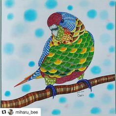 Animal Kingdom Parrot Millie Marotta