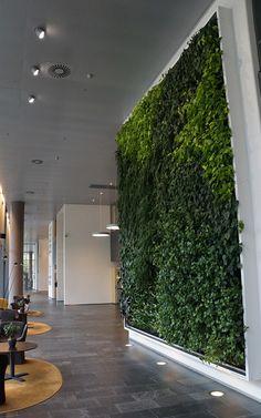 Natural Greenwall at KLP