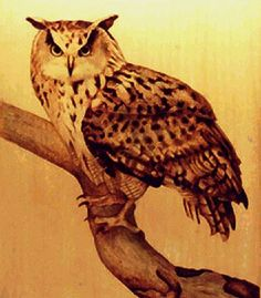 Wood-Burning Art Pyrography | ... Zine, Pyrography News, Special Issue: Pyrography--A Healing Art