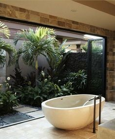 Bathtub Sanctuaries